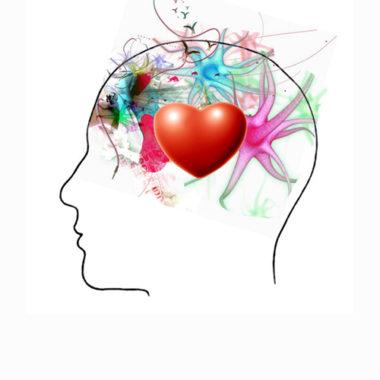 L'intelligence émotionnelle Au Service De Votre Parole